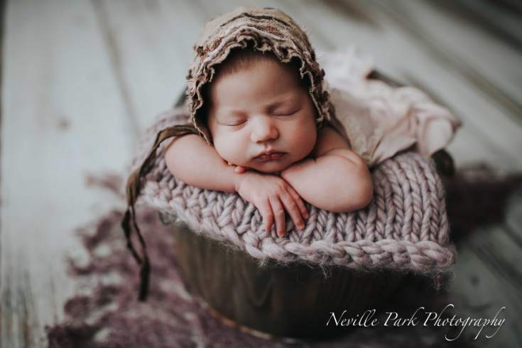 Neville Park Photography Toronto Newborn Photographer Toronto