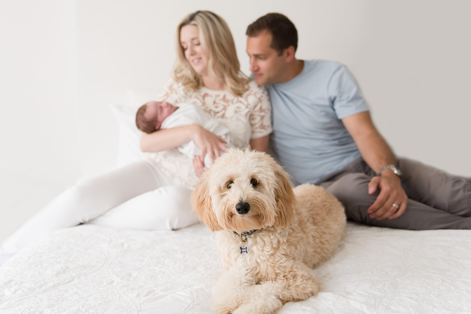 Lifestyle newborn session with family and dog in back bay natural light newborn photography studio by beth miga photography